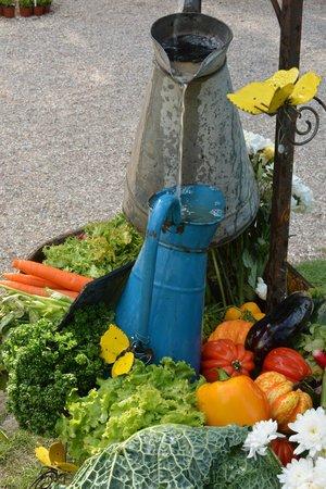 jardin des plantes composition vegetale - Jardin Des Plantes Rouen