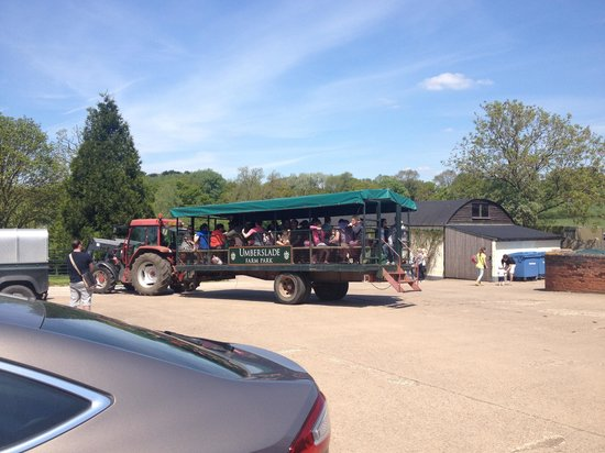 Umberslade Farm Park: Tractor ride