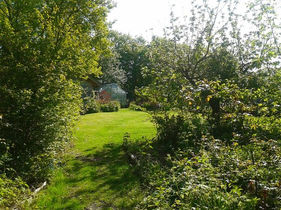 Yew Tree House Bed and Breakfast: Garden 2