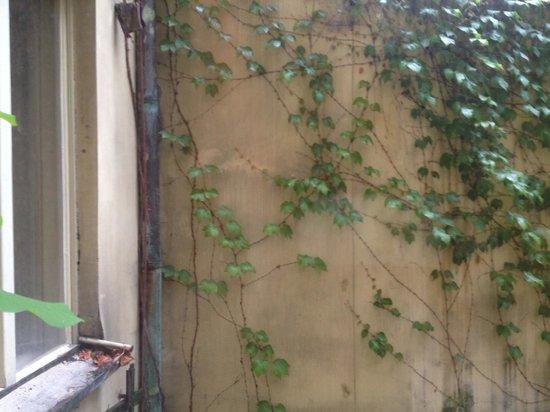 Le Papillon: Вид из окна на стену и окно соседнего номера