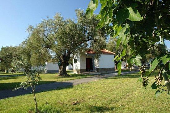 Ascea, Italy: esterni