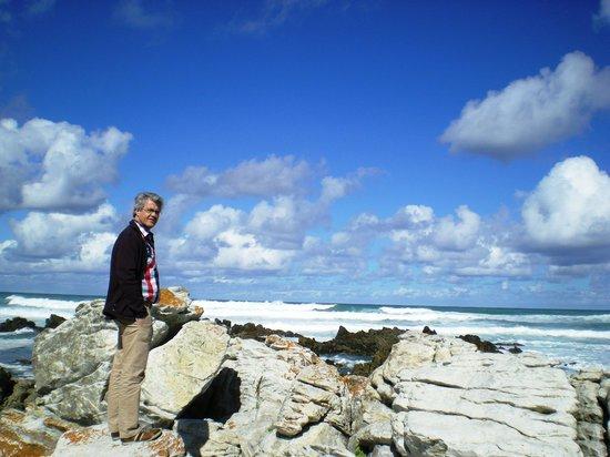 Agulhas National Park : ab hier gibts kein Land mehr bis zum Pol