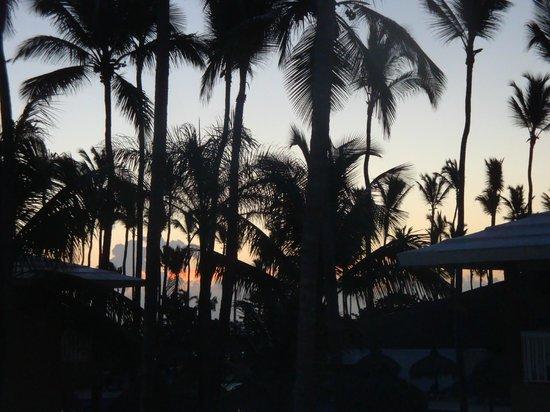 Sirenis Punta Cana Resort Casino & Aquagames: Sonnenaufgang vom Zimmer aus
