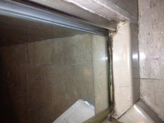 Haiyatt Garden Hotel : bathroom shower 1