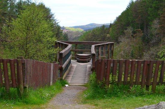 Galloway Forest Park照片