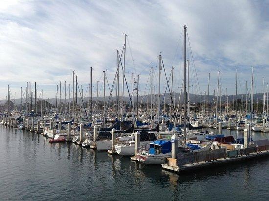 Monterey Marriott: View from the pier