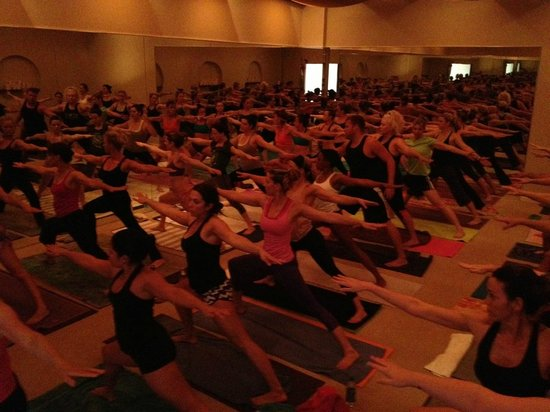 Bodhi Hot Yoga