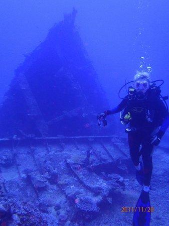 Tranquillity Island Resort & Dive Base: MV Belama, Dive Wreck