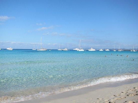 Playa de Ses Illetes: Spiaggia Illetes Formentera