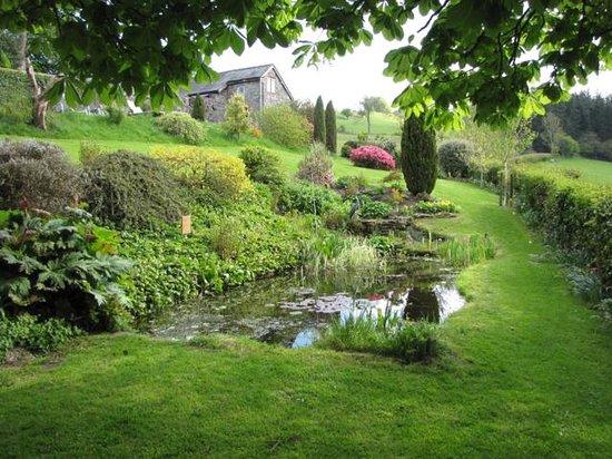 Pen-y-Dyffryn Country Hotel: garden pond