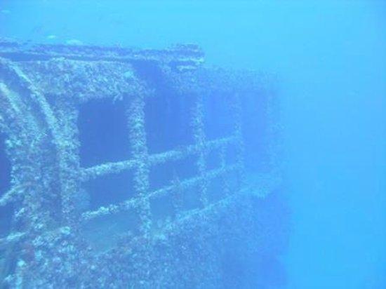 St. Thomas Diving Club: WIT Shoal
