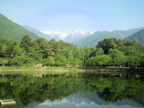 Nakayama : 朝の散歩でこんな美しい景色が