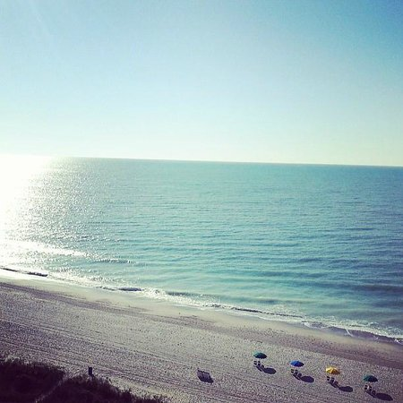 Palmetto Shores Oceanfront: Early Morning view From My Room