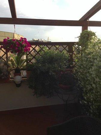Althea Inn Roof Terrace: our lovely terrace