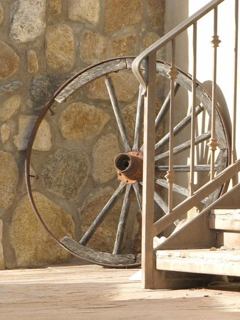 Tanque Verde Ranch: everywhere you look something interesting