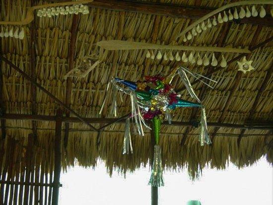 Taberna de los Frailes : Thatched roof