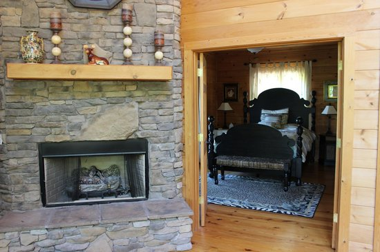 Dogwood Cabins at Trillium Cove: Living Room/Master Bedroom