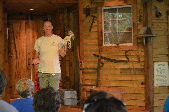 Busch Wildlife Sanctuary: Wildlife talk in the amphitheater