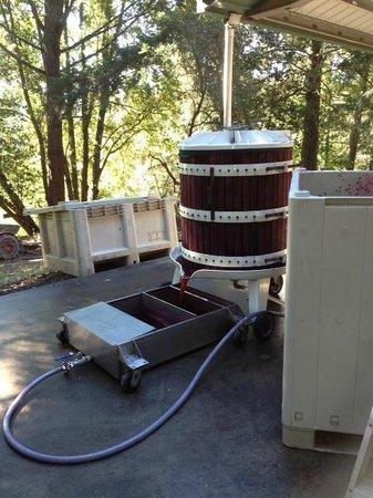 Villa del Monte Winery: Pressing some Merlot
