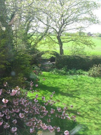 Worthenbury Manor B&B: View to back yard