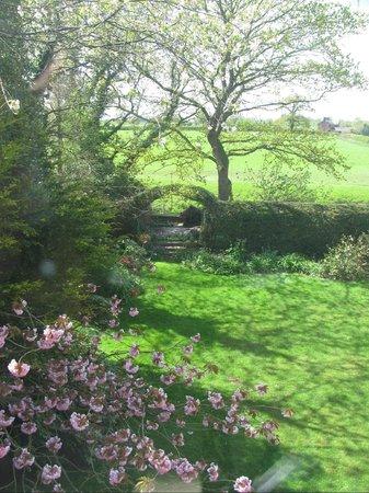 Worthenbury Manor: View to back yard