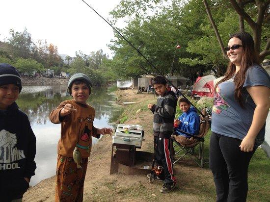 All Seasons RV Park : Kid friendly fishing :)