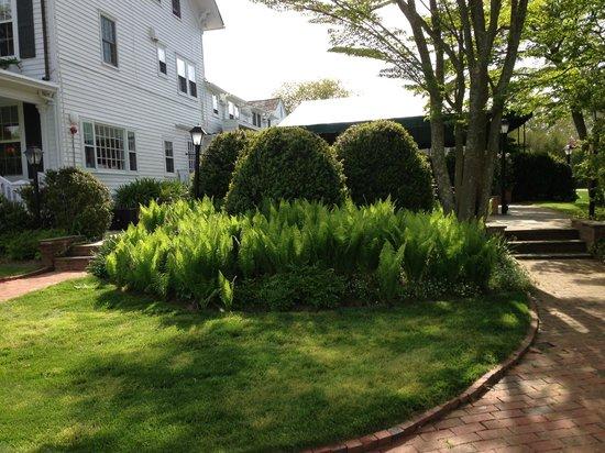 The Hedges Inn: grounds