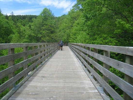 Virginia Creeper Trail: Another trestle on the VCT