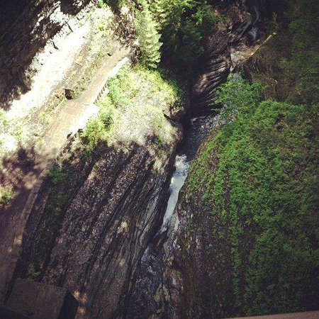 Watkins Glen State Park: Looking down from the bridge over gorge