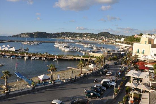 Hotel Villa Carolina: Panoramica di giorno dal terrazzo dell'hotel