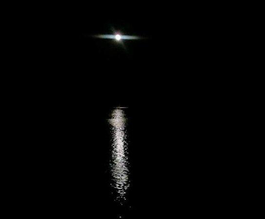 Mount Vernon Trail: Full Moon on Potomac River