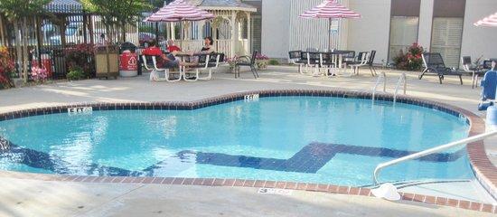 Elvis Presley's Heartbreak Hotel: Pool was nice!