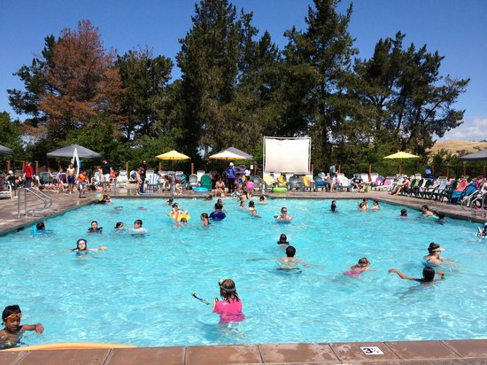 San Francisco North / Petaluma KOA: pool