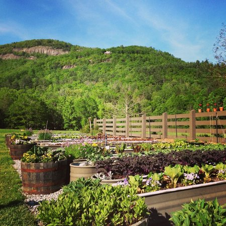 Canyon Kitchen at Lonesome Valley : Garden view