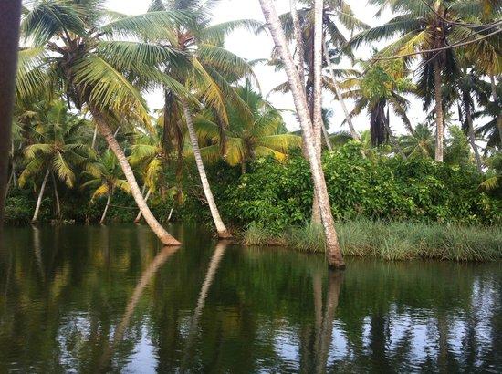 Vasudevam - Premium Suites: near Trivandrum- great boats tour
