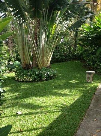 Sandals Ochi Beach Resort: Grounds