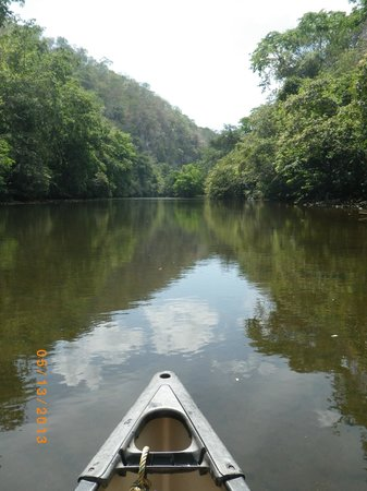 Table Rock Jungle Lodge: Canoeing down the river