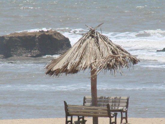 Hotel Palms : Beach