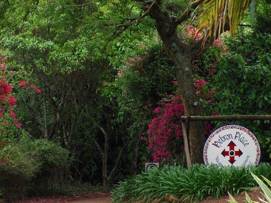 Mosaic Guest Chalets : subtropical paradise