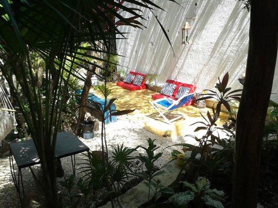Hotel Tunich : el jardin muy fresco