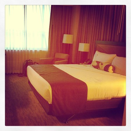 AT&T Hotel and Conference Center: Room