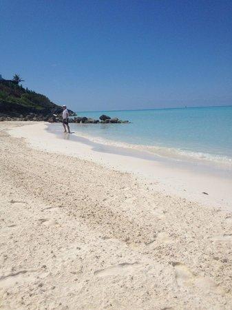 Pompano Beach Club: beautiful Pompano Beach