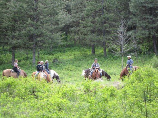 K-Diamond-K Guest Ranch: Trail riding