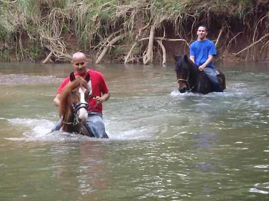 Pr4less Tours Adventure: we are nt your typical trail ride