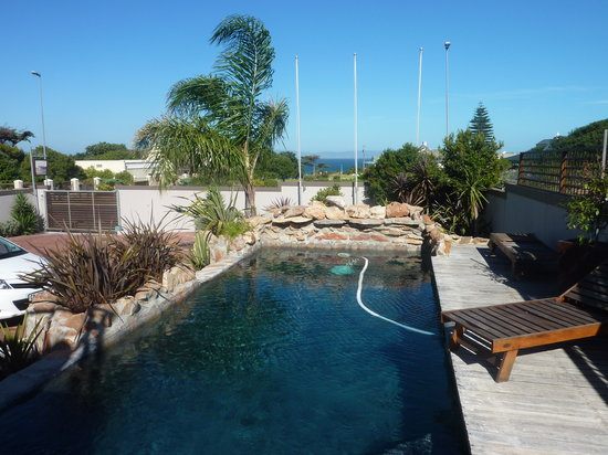 Whale Away Guest House : Small pool in front of the B&B