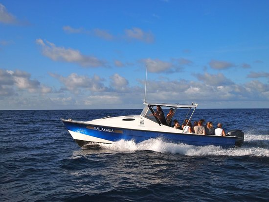 Leleuvia Island Resort: :Kawakawa: our transfer boat
