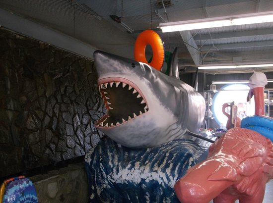 South of the Border: another view of the shark
