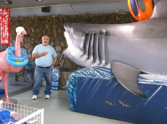 South of the Border: a REAL shark