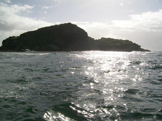 奇洛埃岛照片