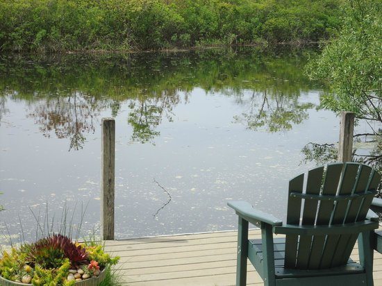 Green Briar Nature Center and Jam Kitchen: Cute Pond